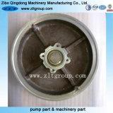 Coperchio della pompa di Durco dell'acciaio inossidabile della pompa centrifuga della pompa dell'ANSI
