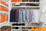 높은 광택 있는 현대 래커 출입 가능 옷장 (BY-W-118)