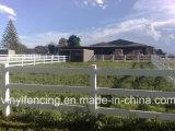 Cerca de carril del rancho del vinilo