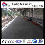 養鶏場のための専門の工場Hタイプ層の鶏のケージ