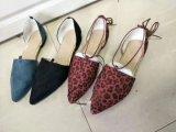 De Schoenen van de Vrouwen van de manier, de Vlakke Schoenen van Vrouwen, Dame Shoes, de Stijlen van de Manier, Hoge/Hoogste Kwaliteit