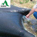 Klärschlamm, der entwässert, Geotube/Beutel und Geobag entwässert