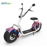 Certificat de la CEE d'Ecorider gros scooter Lt019 de Citycoco de pneu de 18 pouces avec la double portée et les miroirs, scooter électrique de deux roues à vendre