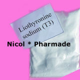 T4 Levothyroxine 나트륨 스테로이드 호르몬 분말 Levothyroxine 나트륨