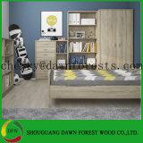 2 de Garderobe van de deur met Interne Plank en de Hangende Garderobes van de Raad van het Deeltje van de Melamine van het Spoor Eiken