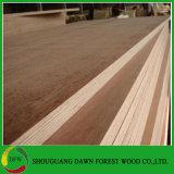 Contre-plaqué phénolique de Keruing de faisceau d'eucalyptus de colle