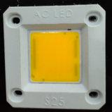 O módulo de LED DE ESPIGAS DE 220V 20W D25
