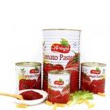 Pasta de tomate enlatada com alta qualidade