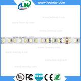 Berufsfertigung mit Streifen des konkurrenzfähigen Preis-SMD2835 CCT LED
