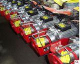 220V 800kg PA 소형 전기 호이스트 기계 드는 기중기