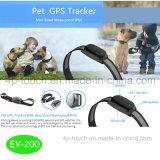 GPS étanche Tracker pour PET/chien/chats avec EV-200 suivi de position en temps réel