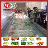 Máquina de lavar frutas e vegetais máquina de processamento de alimentos