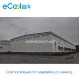 Armazém frio personalizado do volume grande para a fábrica de processamento dos vegetais