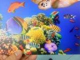 Impressora UV UV1013 do tamanho UV o mais novo da impressão da impressora 100*130 Cm
