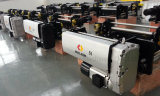 Weihua europäerartige elektrische Hebevorrichtung für Verkauf