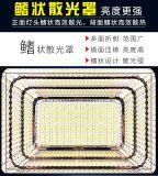 L'énergie solaire LED lumière crue de la sécurité extérieure de jardin lampe chemin