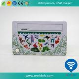 Нештатные багаж PVC печатание логоса изготовления/карточка багажа