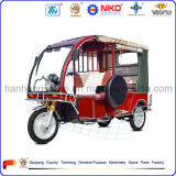 Three Wheel Trike