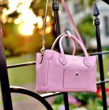 Senhora quente Bolsa do preço de fábrica da venda do plutônio do saco novo das mulheres elegantes do projeto