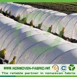 Tissu non tissé en polypropylène spunbond pour une couverture végétale