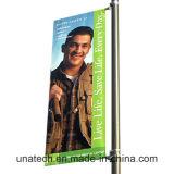 Anúncios de metal Media Image Street Pole Publicidade Assinar Titular (BT14)