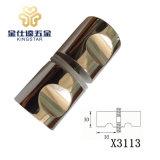 De Knop X3113 van de Badkamers van het Handvat van de Deur van het glas