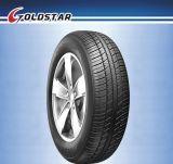 Qualität Car Tire für EU Market (205/65R15)