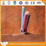 Cavo di rame flessibile di Tsj del conduttore del coperchio di nylon dell'isolamento del PVC del rivestimento di PVC di 600 V