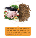 Весьма питания в контракте Enhancer OEM сухой собака питание 20кг