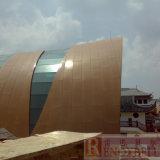 Comitato di alluminio personalizzato per la decorazione esterna