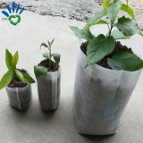 Biodegradierbarer nicht gesponnener Pflanzenbeutel für Pflanzer-wachsenden Beutel