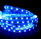 Tiras elegantes de Rgbww LED del color ideal 5050 de Digitaces IC