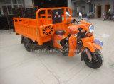 Motocicleta elegante de tres ruedas del surtidor de la fábrica de China