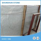 Weiße Bianco Carrara Marmorplatten (Qualität, guter Verkauf)