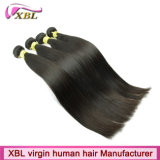 品質1の供給のバージンのブラジルのRemyの毛の織り方