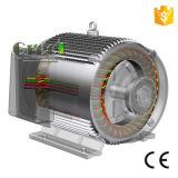 90kw un CA di 3 fasi a bassa velocità/generatore a magnete permanente sincrono di RPM, vento/acqua/idro potere