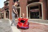Электрическая езда на малолитражном автомобиле с тарелкой Eatting