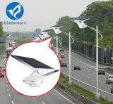 réverbère solaire du détecteur de mouvement de 50W 60W DEL