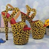 Leecabe Lady Platform Pole Shoes Open Teen Ladies Shoes High Schoenen in de hak Summer Pole Dance Schoenen
