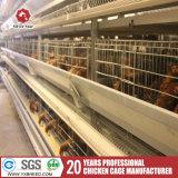 家禽はアフリカの養鶏場のためのケージを層にする
