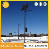 Venta caliente China barata polo 6M 36W LED calle la luz solar Kit con el diseño de 12h