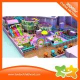 Cour de jeu d'intérieur de gosses multifonctionnels colorés de bonne qualité