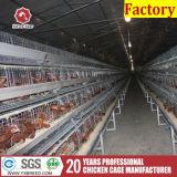 De Kooi van de Kip van de Vogel van de Apparatuur van het Landbouwbedrijf van het Gevogelte van de Landbouwbedrijven van het gevogelte