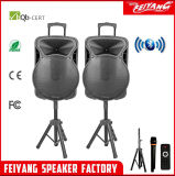 Feiyang/Temeisheng 2.0 Lautsprecher