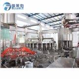Automatischer Flaschen-Frucht-Orangensaft-Produktionszweig, der Maschine herstellt