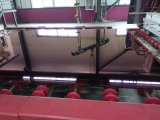 12mm Trempé de fer faible/un verre de sécurité pour le verre trempé de clôtures de piscine