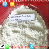 Polvo de Enanthate de la testosterona de los esteroides de Primoteston de la calidad con el mejor precio 2017