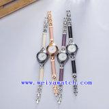 주문 상표 시계 합금 호화스러운 숙녀 시계 (WY-041A)