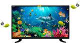 Poste TV sec de l'affichage à cristaux liquides DEL de couleur de pouce HD de l'écran plat 24