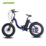 良質のカスタマイズされた容量の工場脂肪質のタイヤの電気自転車